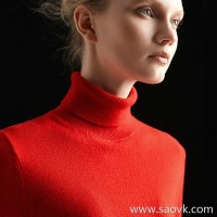 Worm wool cashmere high collar wild pullover sweater bottoming shirt inside red shirt female 2018 new