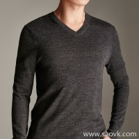 Small insects Italian wool Wild v-neck slim sweater bottoming shirt sweater shirt male 2018 new