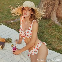 Sisia2019 new European and American ins bikini big breasts sexy small chest gathered small fresh soaking hot spring bathing suit women